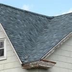 Neighbor's Roof